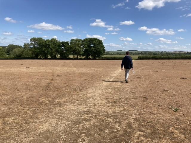 Dead field near Shipton-under-Wychwood