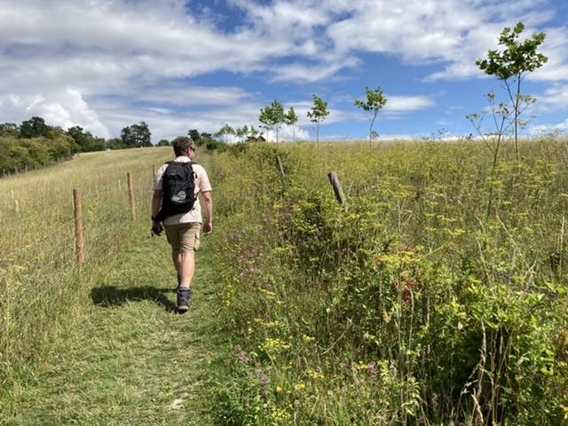 Walking near Middle Assendon farm