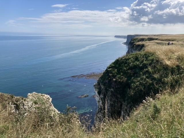 RSPB Bempton Cliffs