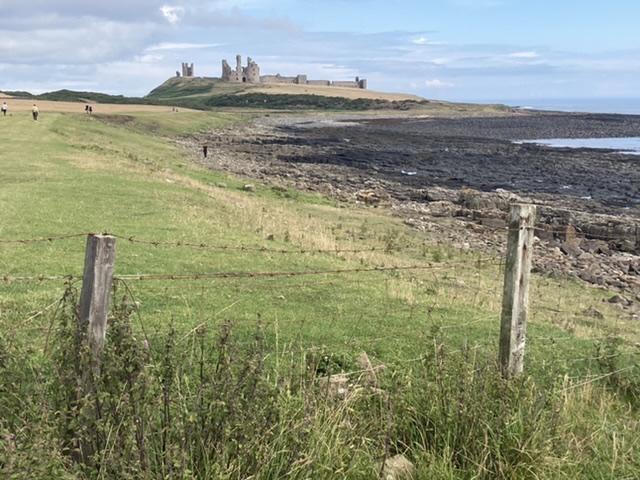 England road trip: day 9 – Northumberland coast
