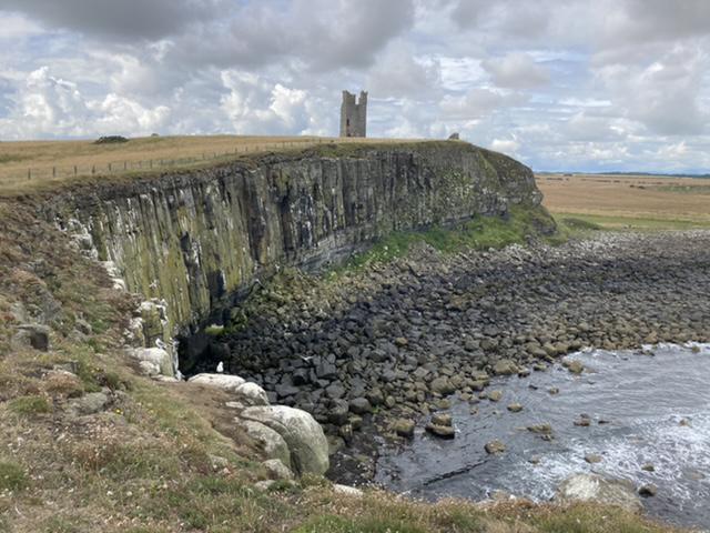 Kittiwake cliffs, Dunstanburgh